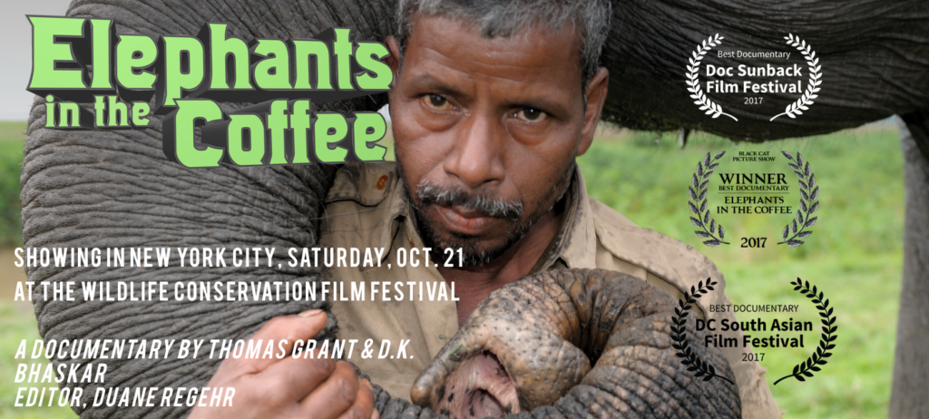 'Elephants in the Coffee' documentary is screening around the world